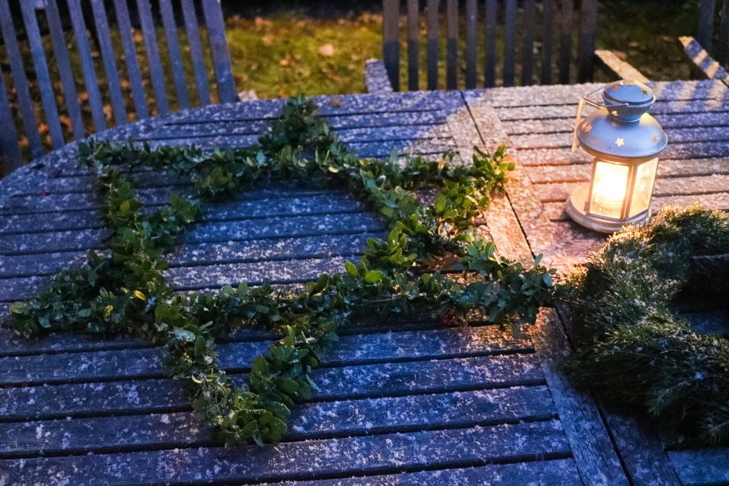 Adventsstjärna